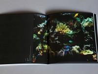 extrait du catalogue de l'exposition La Boule à neige, Le Radar, Bayeux 2013